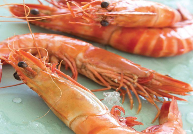 Filets, surgelés, sandre, rouget, sole, king crabe, langoustines